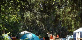 Obóz w lesie