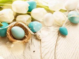 warto jeść jajka