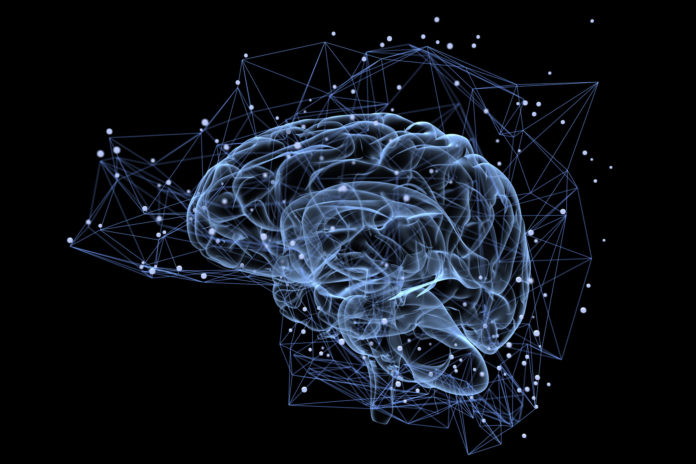 aktywność mózgu