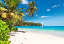 Piaszczysta plaża na karaibach