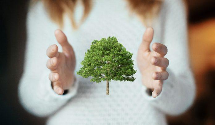 Ochrona środowiska naturalnego