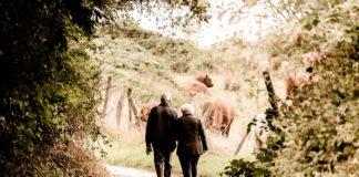 Dziadkowie na wsi na spacerze