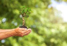 kredyt ekologiczny