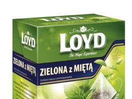 Herbata zielona Loyd