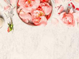 Czy warto stosować produkty z serii Garnier Botanical?