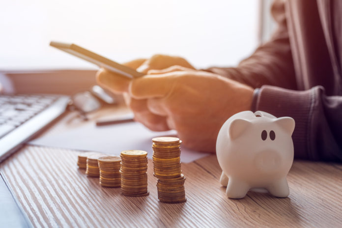 Oszczędności świnka skarbonka