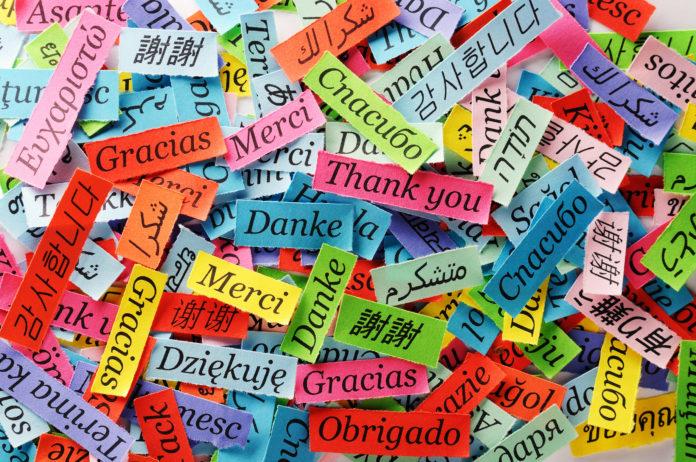kolorowe karteczki z napisem dziękuję w różnych językach