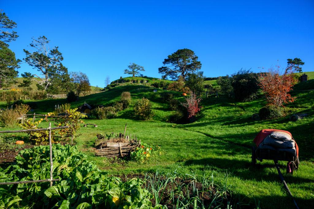 Wioska Hobbitów z trylogii filmowej Władca Pierścieni Matamata, Nowa Zelandia