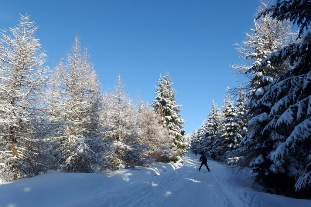 Trasy narciarskie w Górach Izerskich - Jakuszyce, Polska