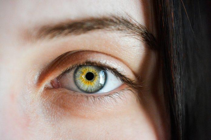 zbliżenie na oko rzadkie brwi