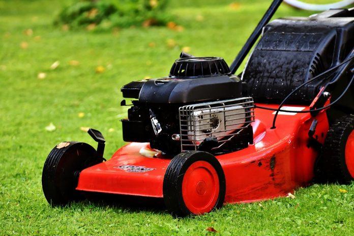 kosiarka spalinowa trawnik