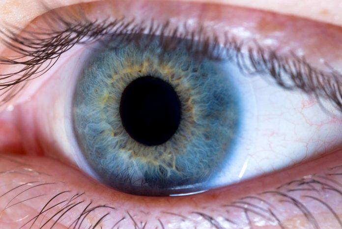 zbliżenie na oko