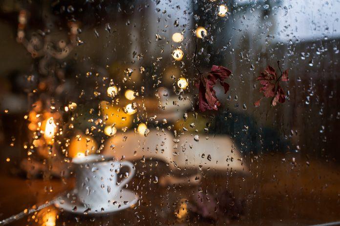 książki na deszczową jesień